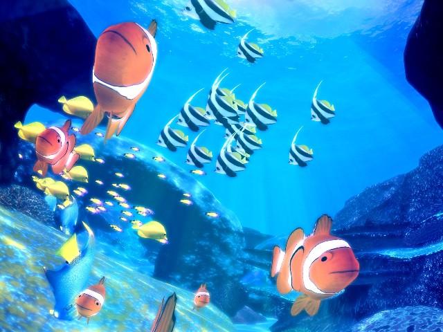 reeffish01
